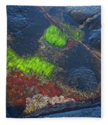 Coastal Floor At Low Tide Fleece Blanket