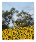 Colby Farms Sunflower Field Newbury Ma Standing Tall Fleece Blanket