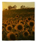 Colby Farms Sunflower Field Newbury Ma Sunset Fleece Blanket