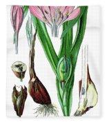 Colchicum Autumnale, Commonly Known As Autumn Crocus, Meadow Saf Fleece Blanket