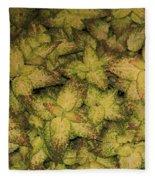 Coleus Plants Pennsylvania Gardens Fleece Blanket