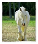 Colonial Horse In Williamsburg Fleece Blanket