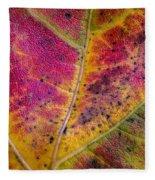 Color And Texture Fleece Blanket