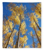 Colorado Aspen Fleece Blanket
