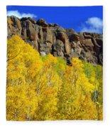 Colorado Fall 3 Fleece Blanket