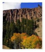 Colorado Fall 4 Fleece Blanket