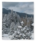 Colorado Foothills Winter Panorama Fleece Blanket