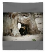 Colorado Giant Tortoise Fleece Blanket