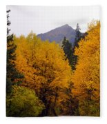 Colorado Road Fleece Blanket