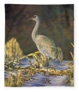 Colorado Sandhill Crane  Fleece Blanket