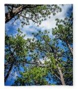 Colorado Skies Fleece Blanket