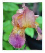Colored Iris  Fleece Blanket