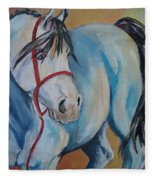 Colored Pony Fleece Blanket
