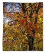 Colorful Autumn Tree In Southwest Michigan By Gun Lake Fleece Blanket