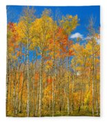 Colorful Colorado Autumn Landscape Fleece Blanket