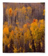 Colorful Colorado Autumn Landscape Vertical Image Fleece Blanket