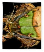 Colorful Cryptic Moth Fleece Blanket
