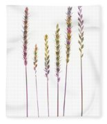 Colorful Grasses  Fleece Blanket