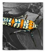 Colorful Insect - Ornate Bella Moth Fleece Blanket