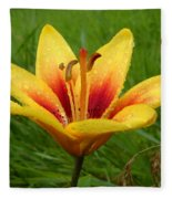 Colorful Lily Dew Drops Fleece Blanket