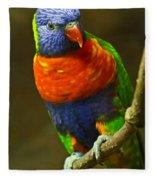 Colorful Lorikeet Fleece Blanket