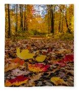 Colorful Path Fleece Blanket