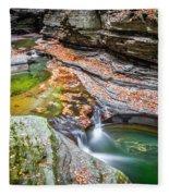 Colorful Pool In The Gorge Of Watkins Glen Fleece Blanket