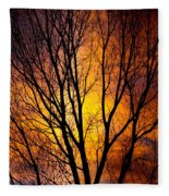 Colorful Tree Silhouettes Fleece Blanket