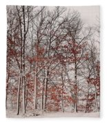Colorful Winters Day Fleece Blanket