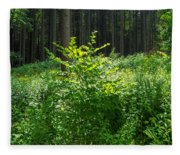 Colors Of A Forest In Vogelsberg Fleece Blanket