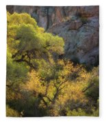 Colors Of Autumn In The Sonoran  Fleece Blanket