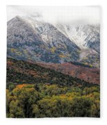 Colors Of Autumn On Mcclure Pass Fleece Blanket