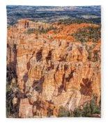 Colors Of Bryce Fleece Blanket
