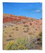 Colors Of The Utah Desert Fleece Blanket