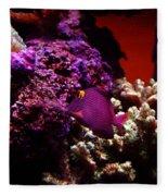 Colors Of Underwater Life Fleece Blanket