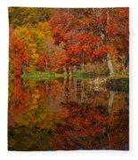 Colors Reflect Fleece Blanket