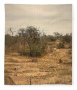 Colourful Safari Fleece Blanket