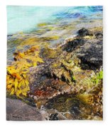 Colourful Sea Life - Fishers Point Fleece Blanket