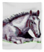 Colt Fleece Blanket