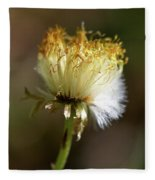 Coltsfoot Bad Hair Day 1 Fleece Blanket