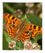 Comma Butterfly Fleece Blanket