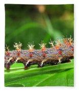Comma Caterpillar Fleece Blanket
