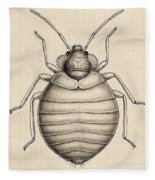 Common Bedbug, Cimex Lectularius Fleece Blanket