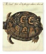 Common Box Tortoise, 1585 Fleece Blanket
