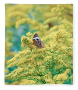 Common Buckeye Butterfly Hides In The Goldenrod Fleece Blanket