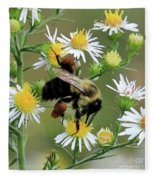 Common Eastern Bumblebee  Fleece Blanket