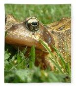 Common Frog Rana Temporaria Fleece Blanket