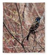 Common Grackle In Spring Fleece Blanket