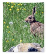Common Hare Fleece Blanket