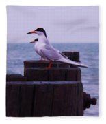 Common Tern Sterna Hirundo Fleece Blanket